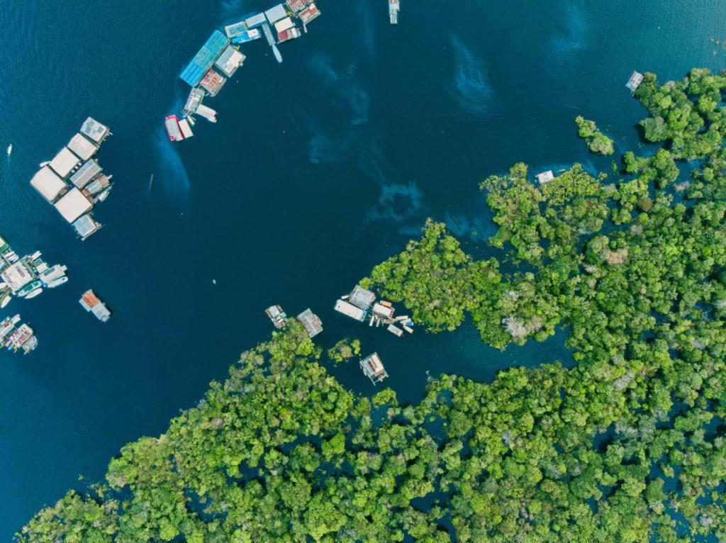 Amazone, Brazilië - Cruise Zuid-Amerika Oceania Cruises - Brasschaat Travel